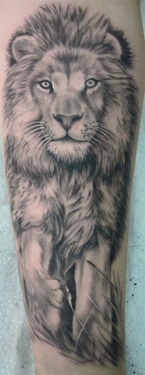 lions tattoos thinking designs