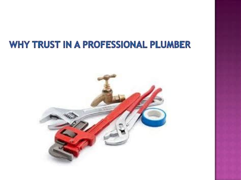 Vets 4 You Plumbing by Why Trust In A Professional Plumber