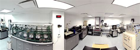 acts laboratory for performance practices laboratory testing laboratory other services