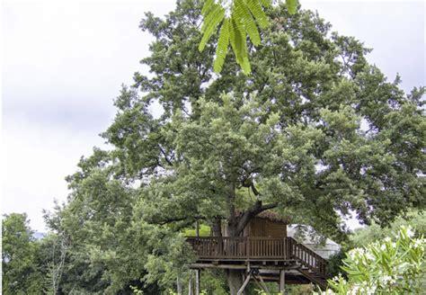 casa sull albero in italia casa sull albero le pi 249 in italia