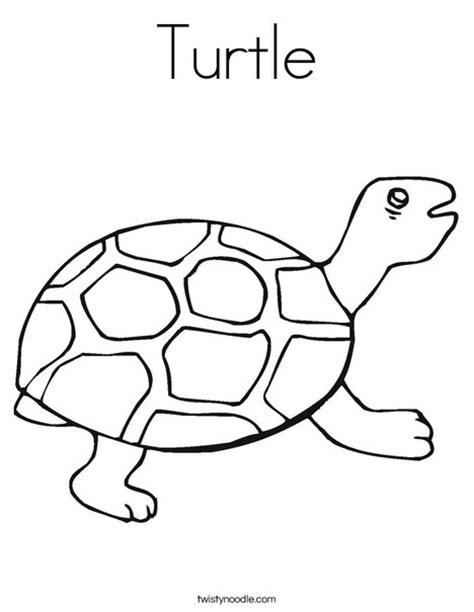 simple turtle coloring page simple turtle coloring pages
