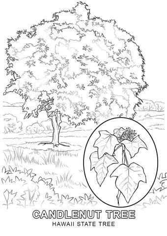 coloring page map of hawaii hawaii printables free coloring pages on art coloring pages