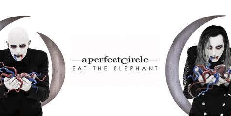 eat review review a circle eat the elephant shout loud magazin