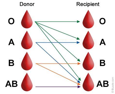 blood types blood types chart