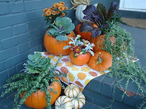 Pumpkin Planter by Turn Your Pumpkin Into A Pumpkin Planter Farmview Market