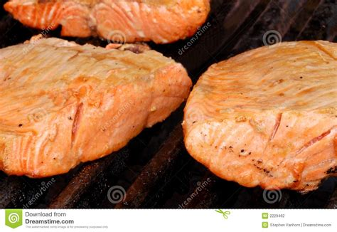 salmon on the grill stock photography image 2229462