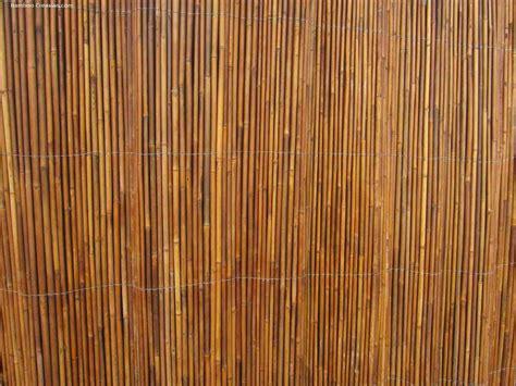 Amazon Outdoor Rugs by Bamboo Wall Covering Decor Ideasdecor Ideas
