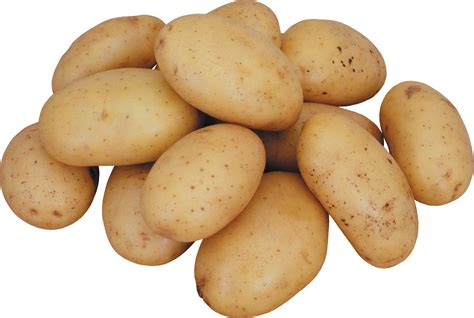 Potato Free by Potato Png Images Pictures Free