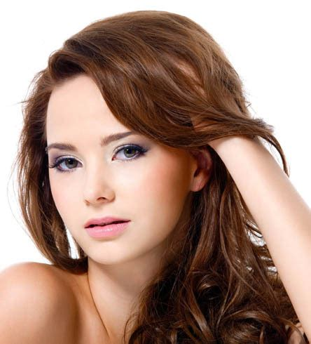 Harga Purbasari Hair Color Henna grosir coklat terang warna rambut henna alami bubuk 100