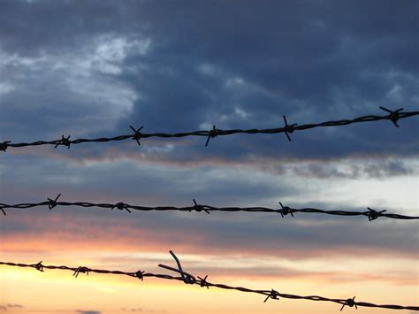 wire background top barbed wire border wallpaper wallpapers
