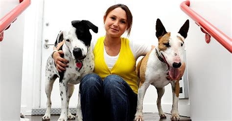 bloombergs girl pushes pet adoption ny daily news