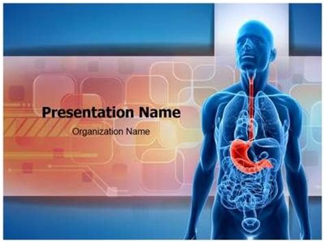 powerpoint templates free download liver 17 best images about digestive system powerpoint templates
