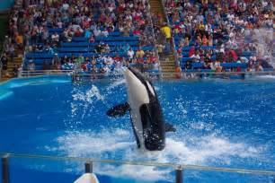 Sea World Lagniappe San Antonio Zoo Photographs