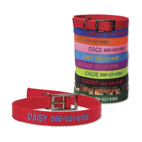 orvis collars collars and leashes personalized metal buckle collar orvis