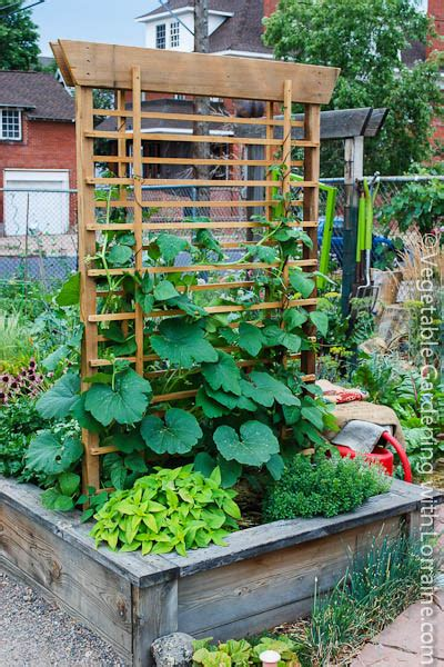 Vegetable Garden Trellis Designs Growing Pumpkins