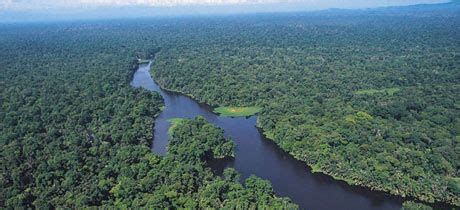 Volcanic Sand by Tours And Activities In Tortuguero Costa Rica