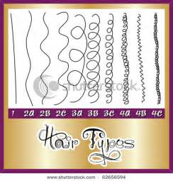 Types Of Hair Strands by Hair Type Chart
