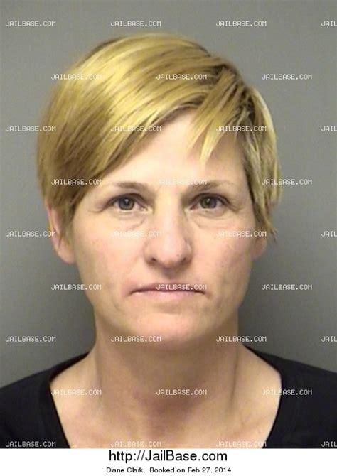 Clarke County Alabama Arrest Records Diane Clark Arrest History