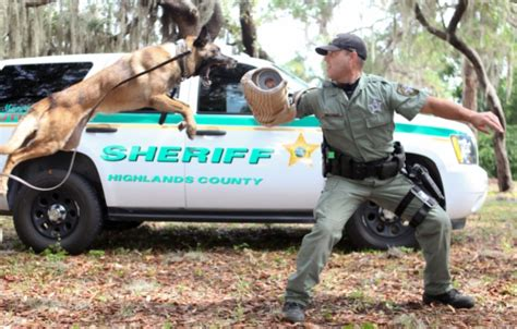 Highlands County Records Search Welcome To Highlands County Sheriff Florida