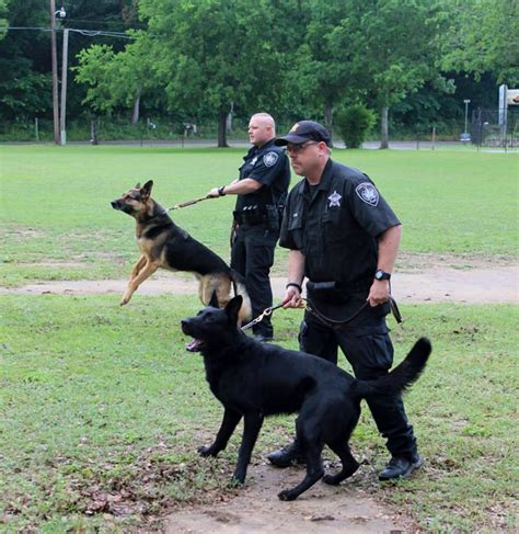 Comal County Warrant Search Sheriff S Office K 9 Unit Comal County
