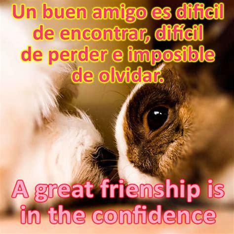 imagenes amistad hermosas imagenes frases hermosas de amistad imagenes lindas para