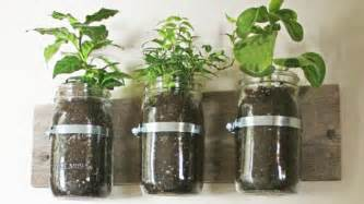 repurpose jars into wall planters lifehacker australia