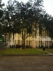 outdoor lights on trees raining lights how amazing would this look hanging from