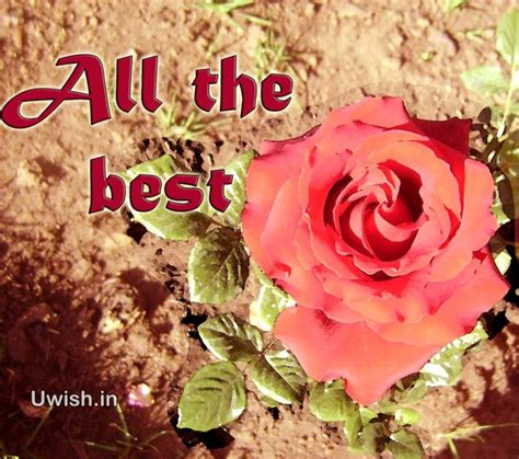 atb all the best all the best wishes wishes greetings pictures wish