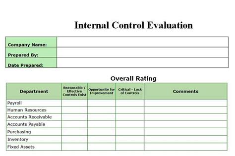 Controls Financial Reporting Template Auditor Forms Vitalics