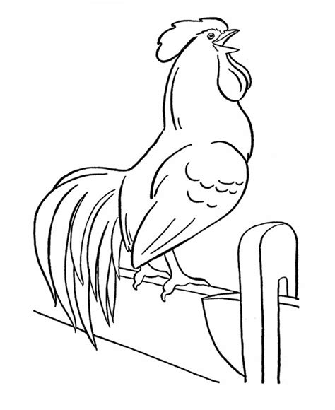 free rooster pictures to print farm animal coloring pages farm animal template animal templates free premium