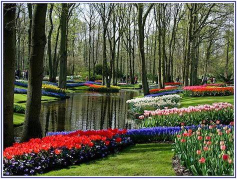 Amazing Flower Garden Keukenhof Tulip Festival Netherlands Europe 2017 Gardens Festivals And