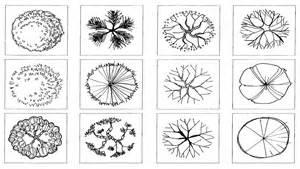 trees symbols in plan lucy nicholls landscape