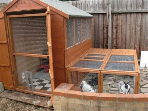 Rabbit Shed by Hutch Rabbit Shed Related Keywords Suggestions Hutch