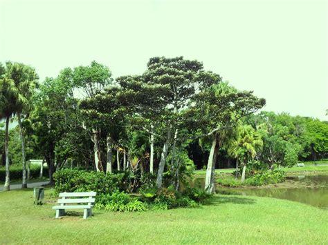 Mauritius Botanical Garden Curepipe Botanic Gardens