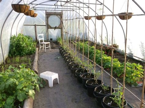 inside greenhouse ideas 25 best ideas about greenhouse interiors on pinterest