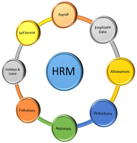 payroll services hr services human capital management view original office edition