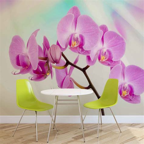 poster fiori carta da parati fiori orchidee europosters it