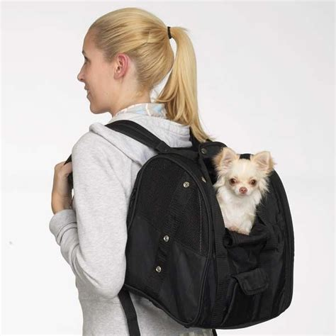 small carrier backpack 17 best traveling bags images on pet supplies pet carriers and dogs