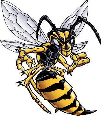 18 best images about bee wasp hornet on pinterest