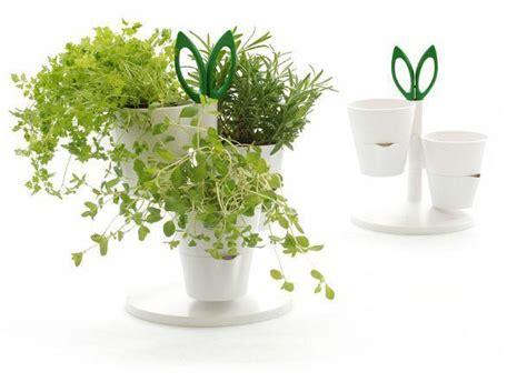 vasi per piante aromatiche contenitori indoor per piante aromatiche