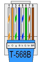cat5e t568b wiring diagram cat5e get free image about