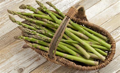 come si cucinano gli asparagi bianchi gli asparagi tipologie e conservazione fuori di zucca