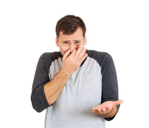 wasserbett stinkt 187 ursachen ma 223 nahmen