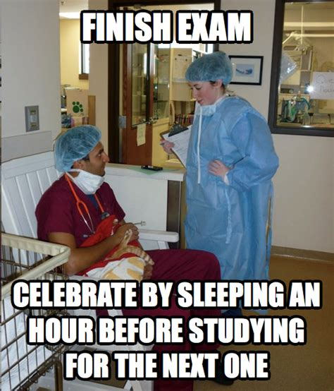 Vet Memes - savma s the vet gazette main the overworked veterinary