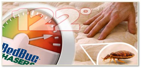 bed bugs philadelphia bedbug chasers of philadelphia bed bug heat treatments one day bed bug heat treatment