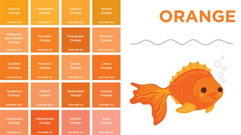 shades of orange color pantone colors a board book for designer geeks wired