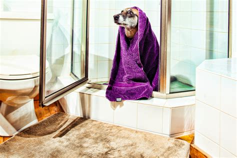 bathtub slip prevention national bath safety month health alliance blog