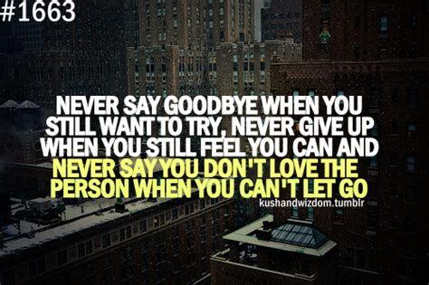 Is It When You Cant Say Goodbye by Never Say You Cant Quotes Quotesgram