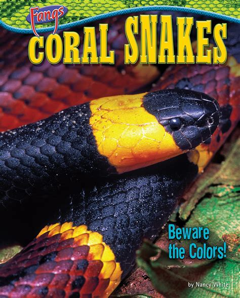 coral snake colors coral snakes beware the colors bearport publishing
