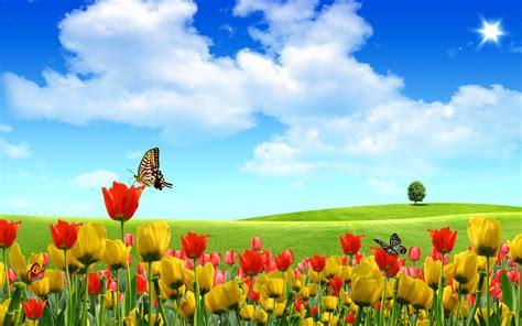 imagenes de mariposas posadas en flores june 2013 june 2013 banco de imagenes gratuitas